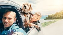 Full Coverage Auto Insurance: Who Is It Really Made For?